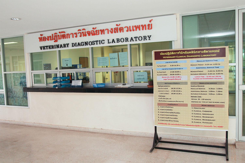 ห้องปฏิบัติการชันสูตรโรคทางปศุสัตว์ คณะสัตวแพทยศาสตร์ มหาวิทยาลัยขอนแก่น (Veterinary Diagnostic Laboratory)